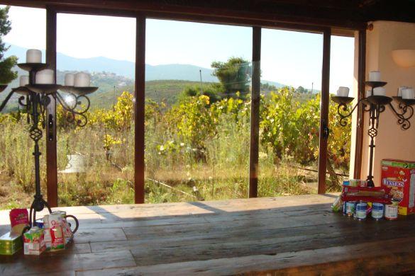 Harvest window Gal