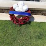 C & C Wreath Report