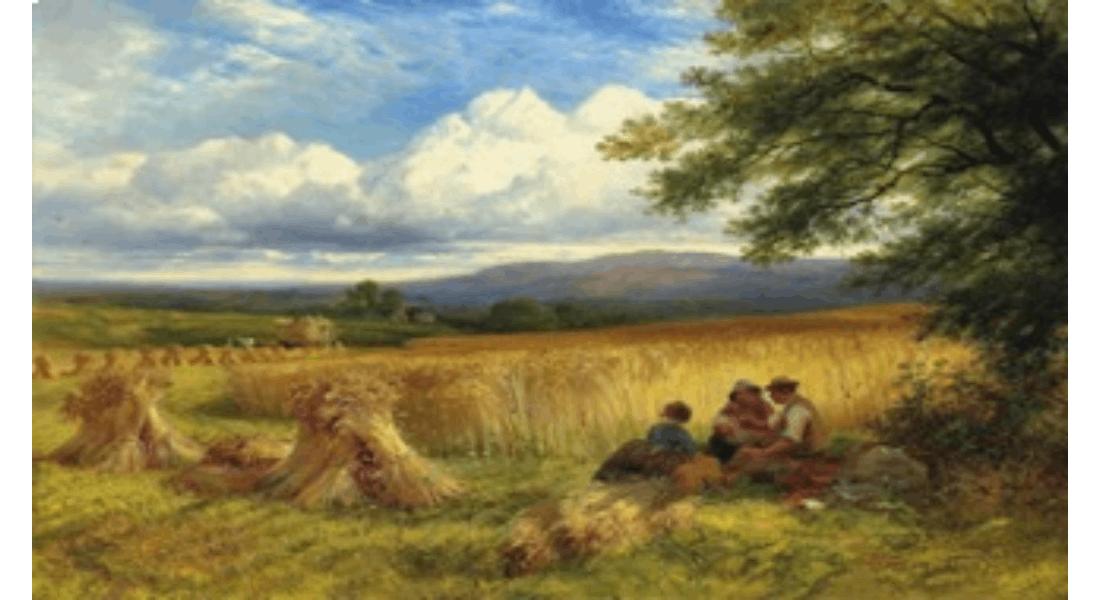 Harvest Blog